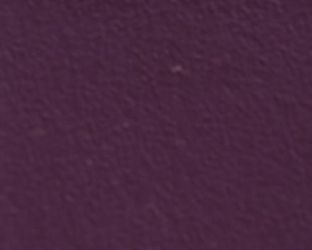 "Aporta folding door ""Prune""  (4021)"
